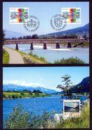 LIECHTENSTEIN - Annata Completa 1995 Maximum Karte - Liechtenstein