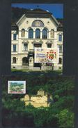 LIECHTENSTEIN - Annata Completa 1996 Maximum Karte - Liechtenstein