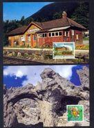 LIECHTENSTEIN - Annata Completa 1997 Maximum Karte - Liechtenstein