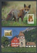 LIECHTENSTEIN - Annata Completa 1993 Maximum Karte - Liechtenstein