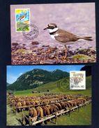 LIECHTENSTEIN - Annata Completa 1989 Maximum Karte - Liechtenstein