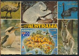 °°° 8104 - AUSTRALIA - VIEWS - 1981 With Stanps °°° - Australia