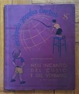 """PINA BALLARIO. Nell'incanto Del Cusio E Del Verbano. """"Enciclopedia Geografica Divertente. N. 8"""" - Encyclopédies"""