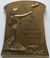 Militaria. Medaille. La Commune Pommeroeul Reconnaissante 1914-1918.  60 X 45 Mm - Francia