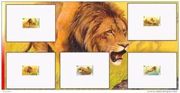 Congo 2094/98 - 5 Epreuves De Luxe   -  Dessin De Buzin  - MNH Superbe! - Democratic Republic Of Congo (1997 - ...)