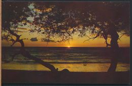 °°° 8157 - COSTA RICA - GUANACASTE - ATARDECER EN PLAYAS DE AVELLANAS - 1982 With Stamps °°° - Costa Rica