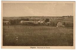 Oignies - Panorama Du Centre - Edit. Vve Petit-Leclercq, Oignies- 2 Scans - Aiseau-Presles