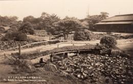 Tokyo Japan, Imperial University Botanical Gardens Campus View, C1930s/50s Vintage Real Photo Postcard - Tokio