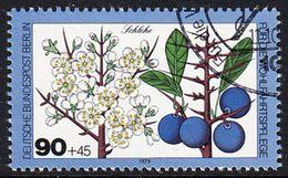 !b! BERLIN 1979 Mi. 610 USED SINGLE (e) - Fruit Of The Wood: Sloe - [5] Berlin