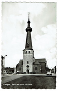 Oelegem, Kerk Met Toren 15e Eeuw - Uitg. Gez. Schepers, Schildesteenweg 2 - Echte Foto - 2 Scans - Ranst
