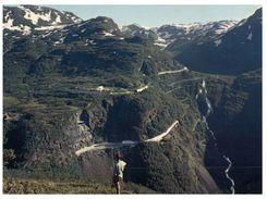 (826) Norway - Landscape Of Myrdal - Norway