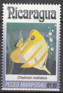 NICARAGUA    SCOTT NO. 1962 P    USED     YEAR  1993 - Nicaragua