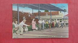 St Peterburg's Fl   Shuffleboard Courts =ref 2698 - Cartes Postales