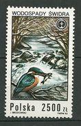 POLAND MNH ** 3181 POISSONS. POISSON. Martin Pêcheur Oiseau Oiseaux - 1944-.... République