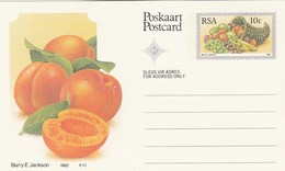 10c SOUTH AFRICA Postal STATIONERY CARD Illus APRICOT FRUIT Cover Stamps Rsa Grapes  Banana - Fruits