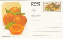 12c SOUTH AFRICA Postal STATIONERY CARD Illus APRICOT FRUIT Cover Stamps Rsa Grapes  Banana - Fruits