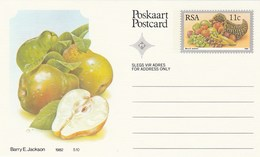 11c SOUTH AFRICA Postal STATIONERY CARD Illus PEAR FRUIT Cover Stamps Rsa Grapes  Banana - Fruits