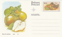 12c SOUTH AFRICA Postal STATIONERY CARD Illus PEAR FRUIT Cover Stamps Rsa Grapes  Banana - Fruits