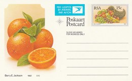 15c SOUTH AFRICA AIRMAIL Postal STATIONERY CARD Illus ORANGES FRUIT Cover Stamps Rsa Grapes  Banana - Fruits