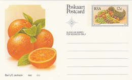 12c SOUTH AFRICA Postal STATIONERY CARD Illus ORANGES FRUIT Cover Stamps Rsa Grapes  Banana - Fruits