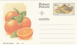10c SOUTH AFRICA Postal STATIONERY CARD Illus ORANGES FRUIT Cover Stamps Rsa Grapes  Banana - Fruits