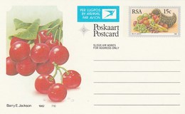 15c SOUTH AFRICA AIRMAIL Postal STATIONERY CARD Illus CHERRIES FRUIT Cover Stamps Rsa Grapes  Banana - Fruits