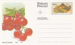 12c SOUTH AFRICA  Postal STATIONERY CARD Illus CHERRIES FRUIT Cover Stamps Rsa Grapes  Banana - Fruits