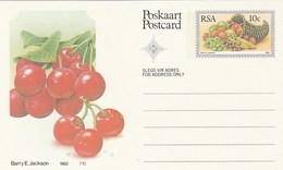 10c SOUTH AFRICA  Postal STATIONERY CARD Illus CHERRIES FRUIT Cover Stamps Rsa Grapes  Banana - Fruits