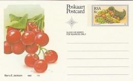8c SOUTH AFRICA  Postal STATIONERY CARD Illus CHERRIES FRUIT Cover Stamps Rsa Grapes  Banana - Fruits
