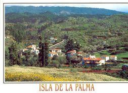 Canaries - La Palma - Breña Baja - Puntagorda - Vista Parcial - Ediciones DAVID Barcelone Nº 265 - Neuve - 2149 - La Palma