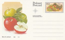 12c SOUTH AFRICA  Postal STATIONERY CARD Illus APPLE FRUIT Cover Stamps Rsa Grapes  Banana - Fruits