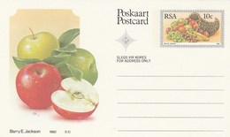 10c SOUTH AFRICA  Postal STATIONERY CARD Illus APPLE FRUIT Cover Stamps Rsa Grapes  Banana - Fruits
