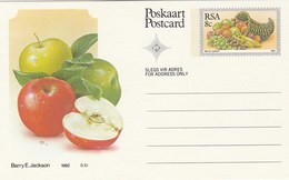 8c SOUTH AFRICA  Postal STATIONERY CARD Illus APPLE FRUIT Cover Stamps Rsa Grapes  Banana - Fruits
