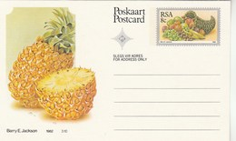 8c SOUTH AFRICA Postal STATIONERY CARD Illus PINEAPPLE FRUIT Cover Stamps Rsa Grapes  Banana - Fruits