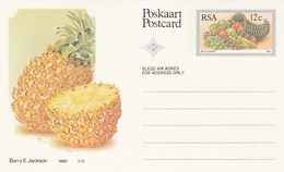 12c SOUTH AFRICA Postal STATIONERY CARD Illus PINEAPPLE FRUIT Cover Stamps Rsa Grapes  Banana - Fruits