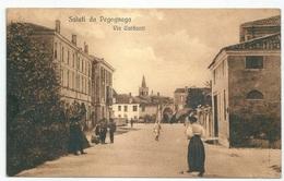 PEGOGNAGA - Mantova