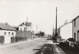 Haut-Fays - LOT 3 CP - Route Vers Wellin Les écoles Et La Poste + Place Et Monument + Sclassin - Daverdisse