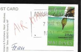 MALDIVES Diver's Paradise Colorful Soft Corals 1995 - Maldives