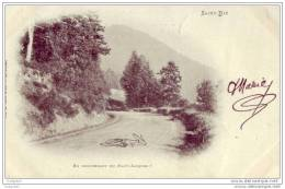 88 - Saint-die - En Descendant Du Haut-jacques ! (1900) - Saint Die
