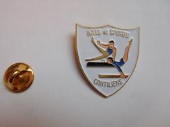 Beau Pin's , Gymnastique , Poutre , Cheval D'arçon , Arts Et Sports Cantiliens , Canteleu , Pin Up , Seine Maritime - Gymnastiek