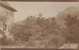 Carte-Photo - Propriété Villa Provence - Montagne Sainte-Victoire 83 (?) - A Situer - Photographie