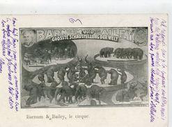 CIRQUE - Barnum Bailey - Eléphants - Cirque