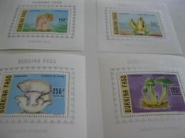 Burkina Faso-1996-fauna,flora-mushrooms-Deluxe.MI.1380-83A - Burkina Faso (1984-...)