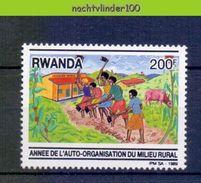 Mwe2520 FAUNA ZOOGDIEREN BOERDERIJDIEREN KOE COW KUH MILIEU MAMMALS FARM ANIMALS RWANDA PF/MNH - Koeien