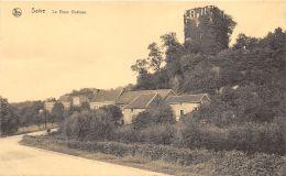 Saive - Le Vieux Château - Blegny