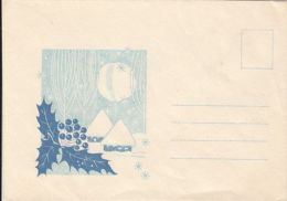 65399- WINTER LANDSCAPE, HOUSE, MISTLETOE, SPECIAL COVER, UNUSED, ROMANIA - 1948-.... Republiken