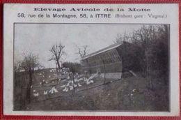 ITTRE - VIRGINAL - Elevage Avicole De La Motte , Peu Courante - Ittre