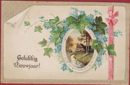 Bonne Annee Gelukkig Nieuwjaar Enfants Carte Fantaisie Gaufree Embossed Relief Trefle Klavertje Vier - Año Nuevo