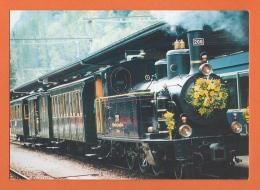 Dampflokomotive, Locomotive à Vapeur, G 3/4 208 (ex Brünig SBB) 1913 Ballemberg Dampf-Bahn - Brienz - Trains