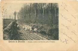 Environs De Bruxelles - Chemin Creux à La Morette Près D'Assche - Asse